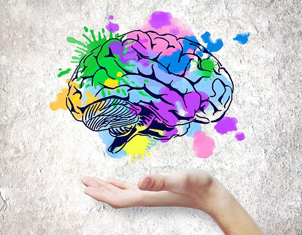 plasticité cérébrale stimulation cognitive des personnes âgées